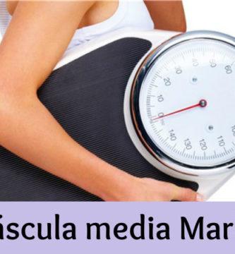 Bascula media markt