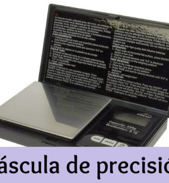 Bascula de precision